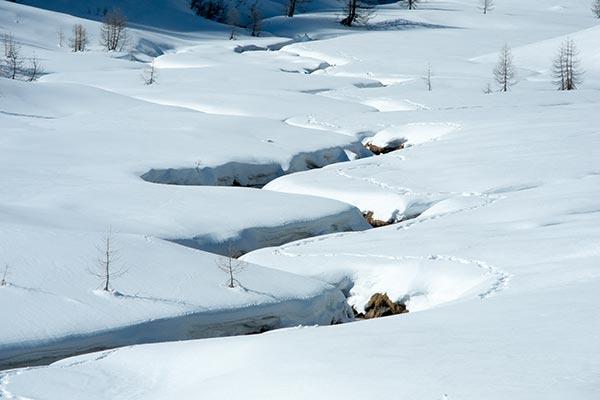 Schneeschuhwanderungen im Unterengadin